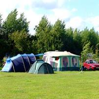 Evergree Farm Campsite
