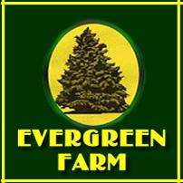 Down on Evergreen Farm Ashwater Devon